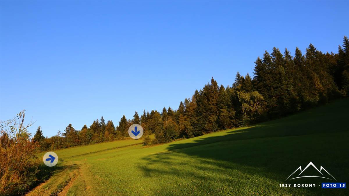 Łąka za przełęczą Sańba